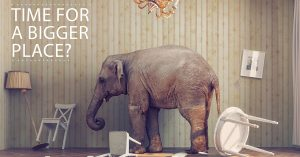 I Don't Want To Point Out The Elephant In The Room...But It Might Be Time For A Bigger Place
